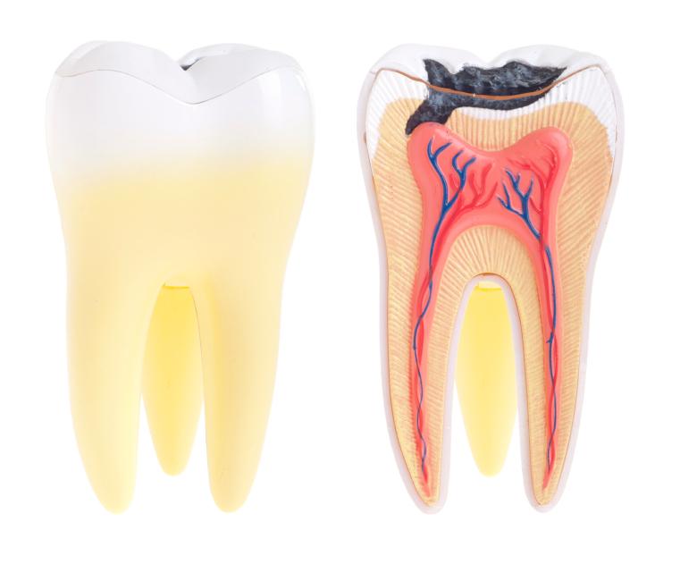 Dental Tips Guides Dr Wolnik Blog